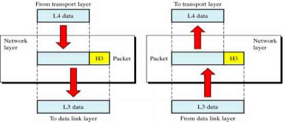 Network Layer - Division Multiplexing