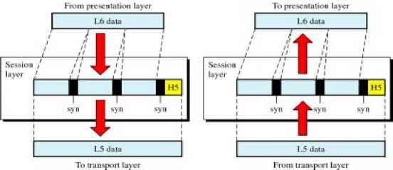 Synchronization Points Session Layer